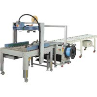 Automatic Packaging Line