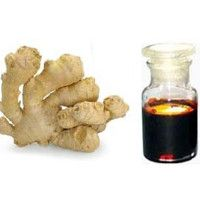 Ginger Oleoresin - Manufacturers, Suppliers & Exporters in India