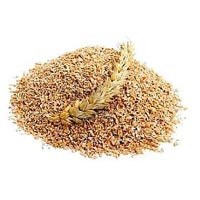 Food Grains & Cereals