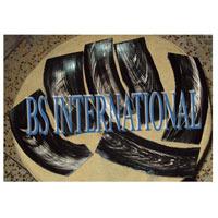 Buffalo Horn Blank