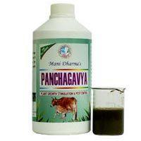 Panchagavya Fertilizers