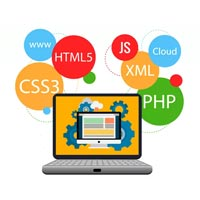 Web Development & Marketing Services