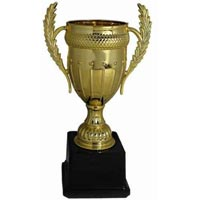 Sport Cups