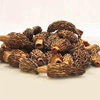 Mushroom & Truffle