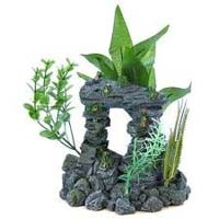 Aqua Culture, Aquarium & Accessories