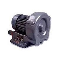 Power Blowers
