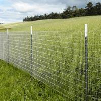 Garden Fencing