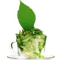 Tea Extract