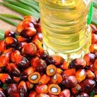 Palmolein Oil