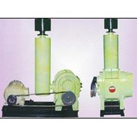 Twin Lobe Blowers