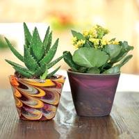 Handmade Flower Pots