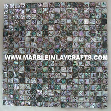 Sea Shell Semi Precious Abalone Wall Tiles