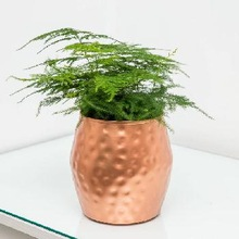 copper flower pot