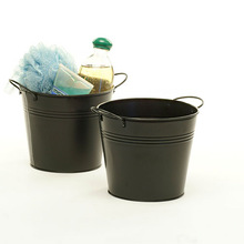 Iron Flower Buckets and holder