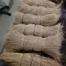 coir bristle fiber