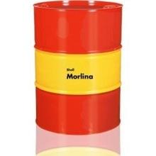 Bearing and Circulating Oils