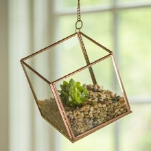 HANGING TERRARIUMS WITH CHAIN