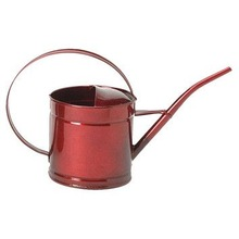 Oval galvanized watering can