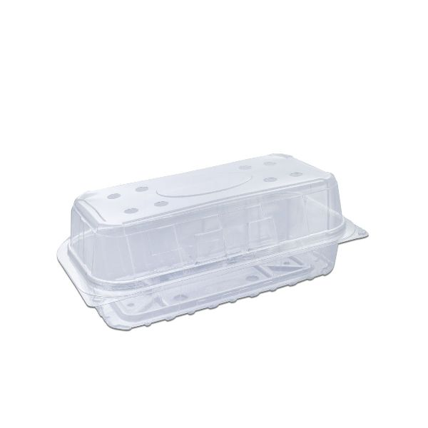 Clear Ventilated Rectangular Box Flat Bottom w/ Hinged Lid
