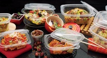 Hot/Cold Multipurpose Containers and Lid