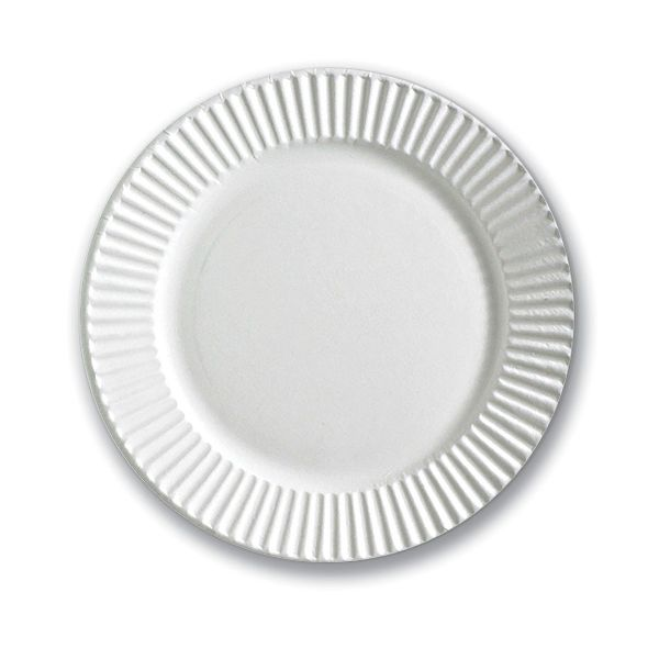 Standard Paper Plate 6in - White
