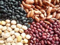 Black Kidney Beans/White Kidney Beans/Red Kidney Beans/Speckled Kidney Beans/Haricot Beans