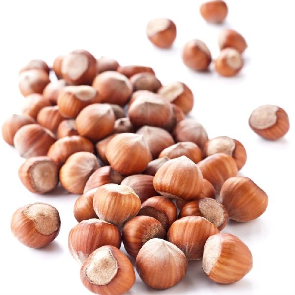 Chinese Good Quality Natural Blanched Price Raw Hazelnut for sale (AS2346T)
