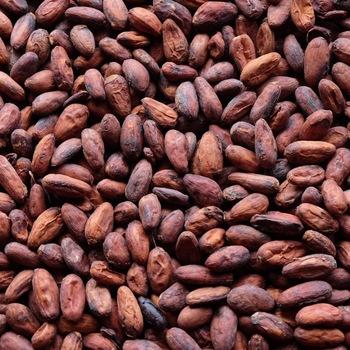 Grade A Cocoa Beans (001)