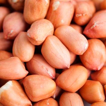 Raw Peanuts for Sale (001)