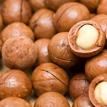 Roasted Macadamia Nuts (Unsalted) For export (001)