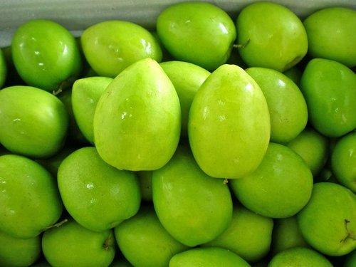 Green Apple Ber Fruit