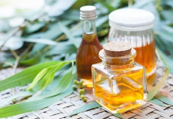 Eucalyptus Oil (BIO-6824961234)