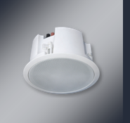 CO-AXIAL CEILING SPEAKER