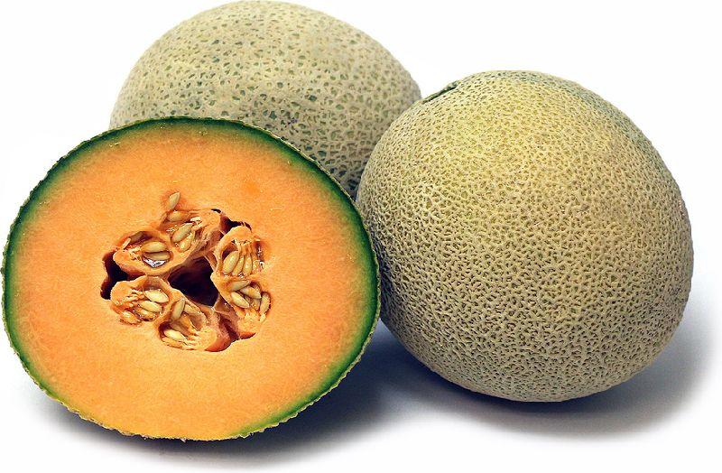 Fresh Cantaloupe Fruit