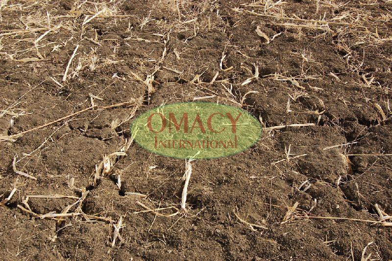 Crop Recycle Fertilizer