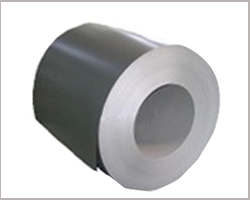 Mild Steel Coated Coil
