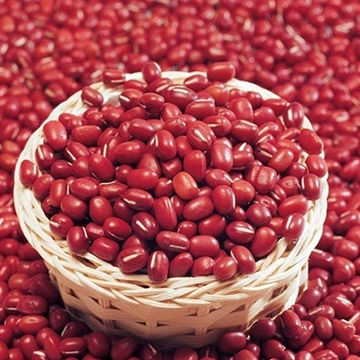 Red Kidney Beans Exporters In South Africa By Hbk Wholesales Pty Ltd Id 4346695