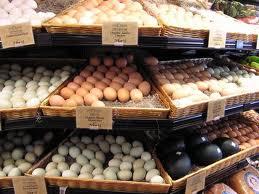 Fertile Parrots Eggs (ZHY8340875)