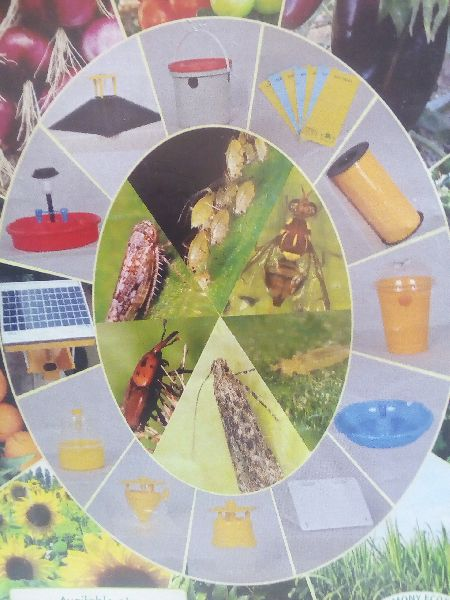Manufacturer In Nagpur: Liquid Bio Fertilizer Manufacturer In Nagpur Maharashtra