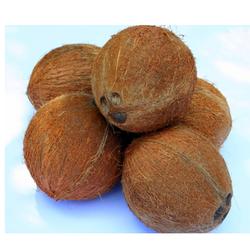 Semi Husk Coconuts
