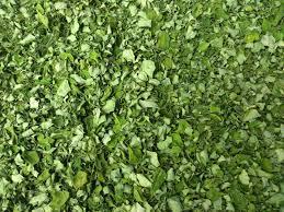 Organic Moringa Dry Leaves