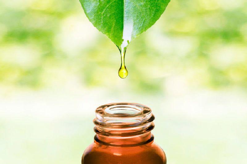 Natural Aristo Oil