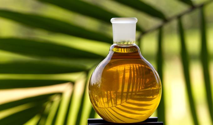 Organic Aristo Oil
