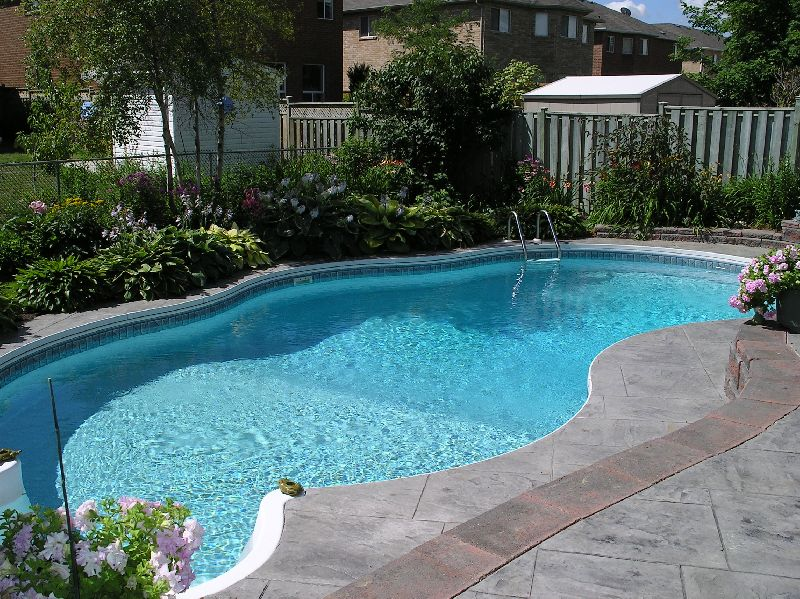 Readymade Swimming Pool Buy Readymade Swimming Pool For Best Price At Inr 2 50 Lacinr 5 Lac Piece S