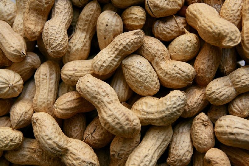 Java Shelled Peanuts