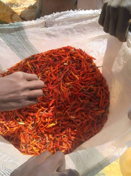 Long Dried Red Chilli