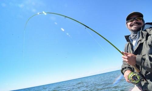 Fishing Rod (Fishing rod)