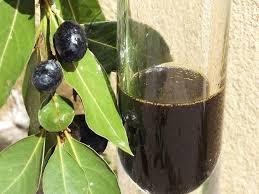 Laurel Seed Oil