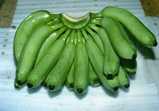 Raw Banana Manufacturer in Delhi Delhi India by Fresh Vegfru Pvt ...