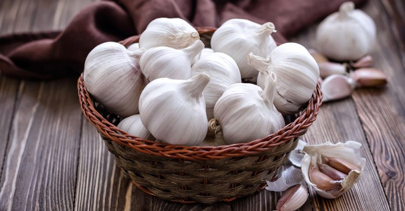 Organic Garlic Manufacturer in Mumbai Maharashtra India by SM Agrozone LLP  | ID - 4984242